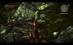 Witcher 2 Screenshot