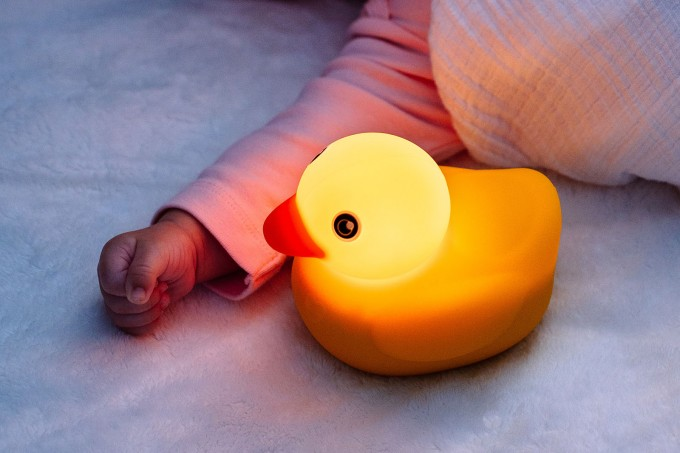 Edwin the Duck Learning Toy