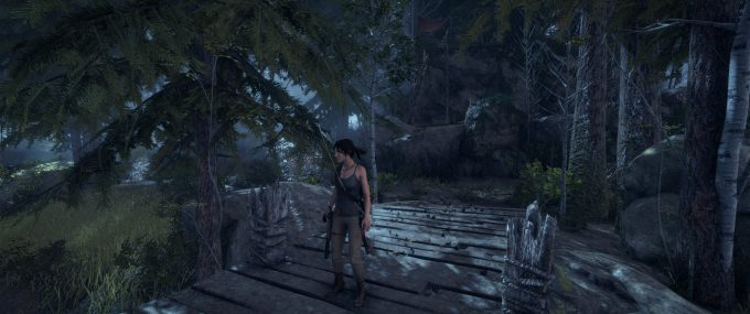 Rise of the Tomb Raider Best Playable - NVIDIA GeForce GTX 1080 (3440x1440)