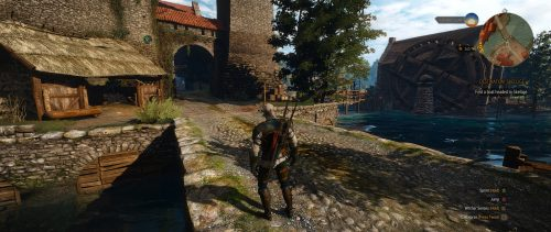 NVIDIA GeForce GTX 1060 Best Playable (2560x1080) - The Witcher 3 Wild Hunt