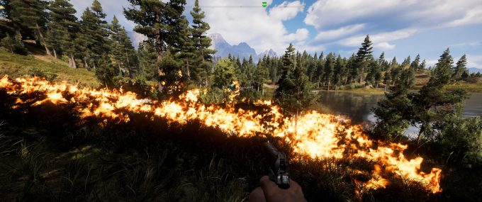 Far Cry 5 Co-op - Starting Fires