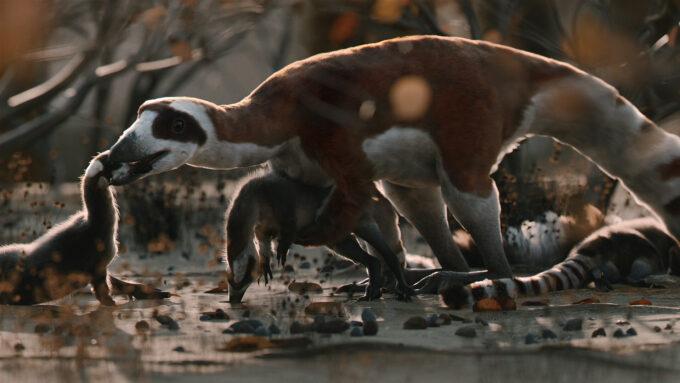 Blender 2.92 Splash Screen Project - Sinosauropteryx Prima (Credit - Joanna Kobierska)