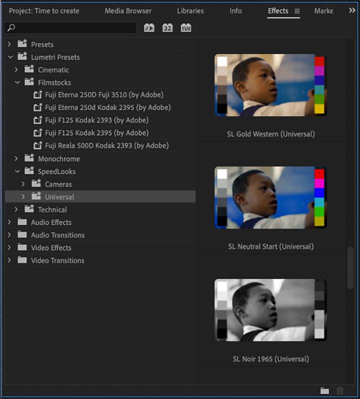 Adobe Premiere Pro - Dynamic Lumetri Presets